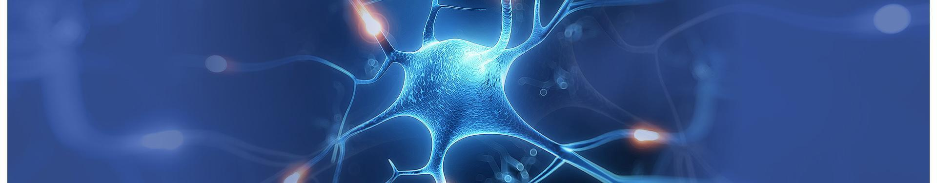 banner wizualizacja neuronu